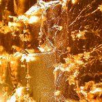 Blattgold Leuchtobjekt, Meridian Spa Alstertal, Detail (2004)2